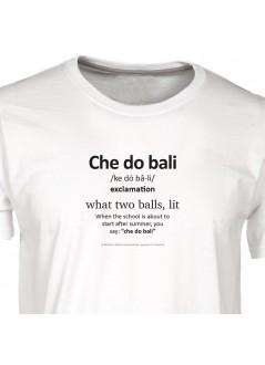 "t-shirt Claudio Baglioni ""canzone"" unisex - bianca"